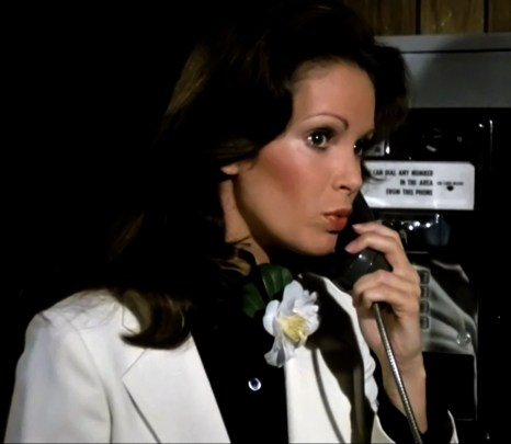 Jaclyn Smith (210)