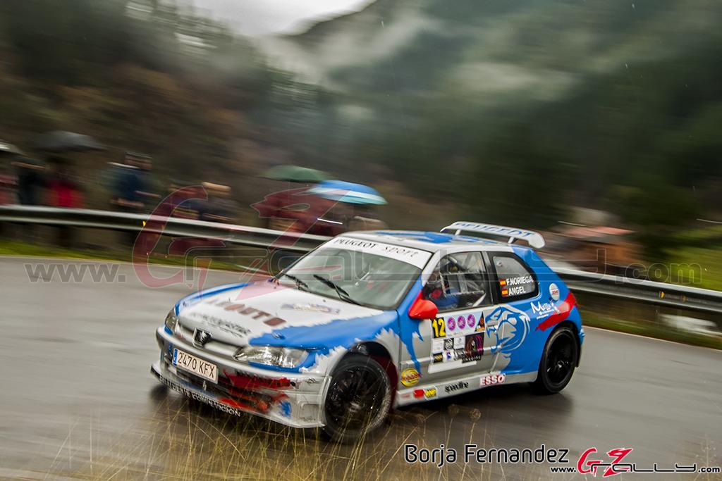 Rally_CangasDeNarcea_Fernandez_17_0049