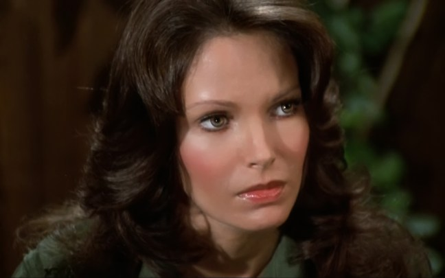 Jaclyn Smith (175)