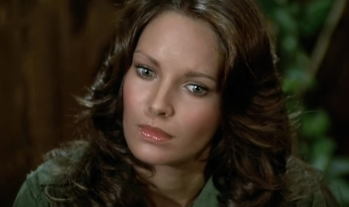 Jaclyn Smith (179)