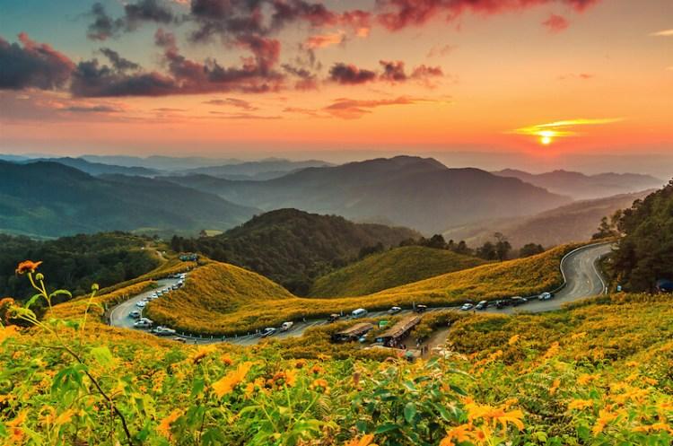Tung Bua Tong