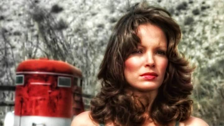 Jaclyn Smith (129)