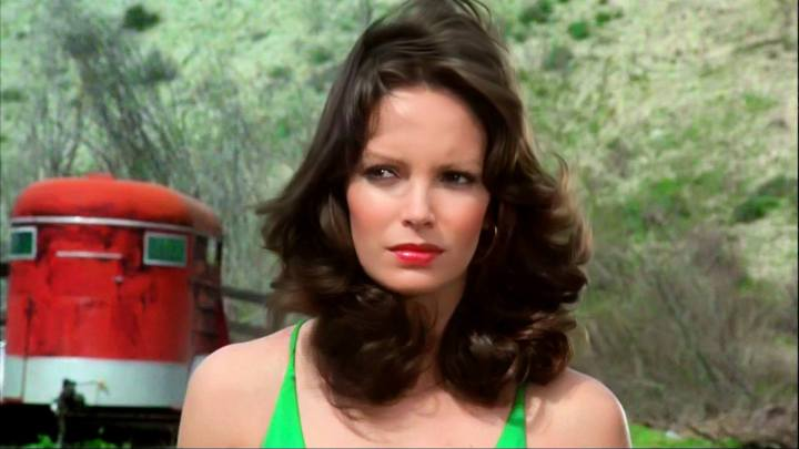 Jaclyn Smith (131)