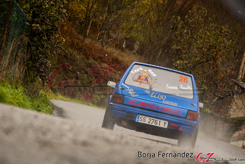 Rally_CangasDeNarcea_Fernandez_17_0025