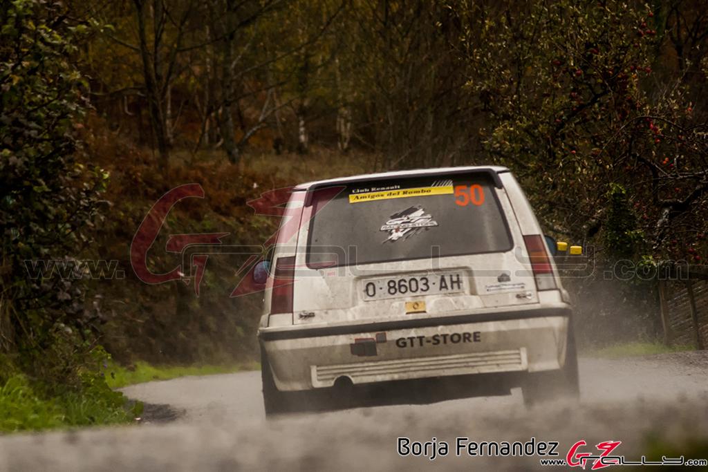 Rally_CangasDeNarcea_Fernandez_17_0041