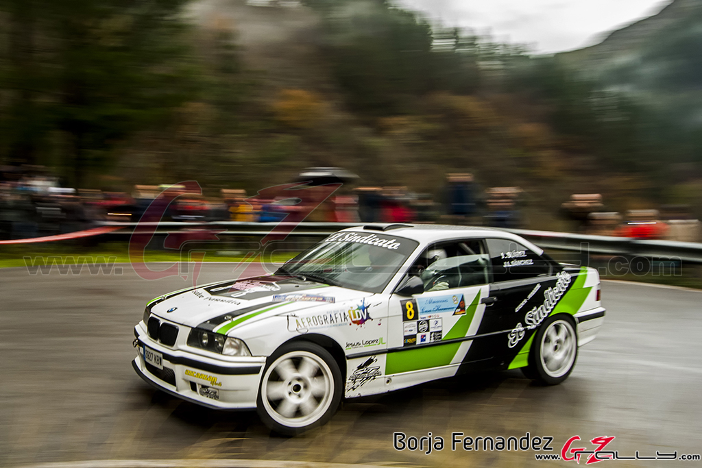 Rally_CangasDeNarcea_Fernandez_17_0012