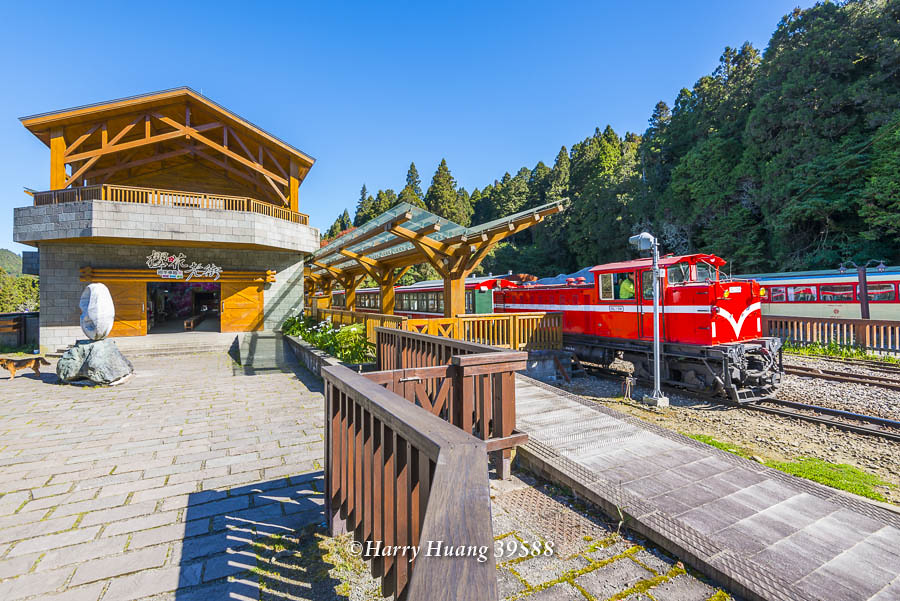 Harry_39588,阿里山,沼平車站,沼平站,小火車,森林小火車,鐵路,鐵道,阿里山國家森林遊樂區,國家森林遊樂… | Flickr