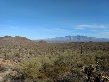 West Saguaro National Park