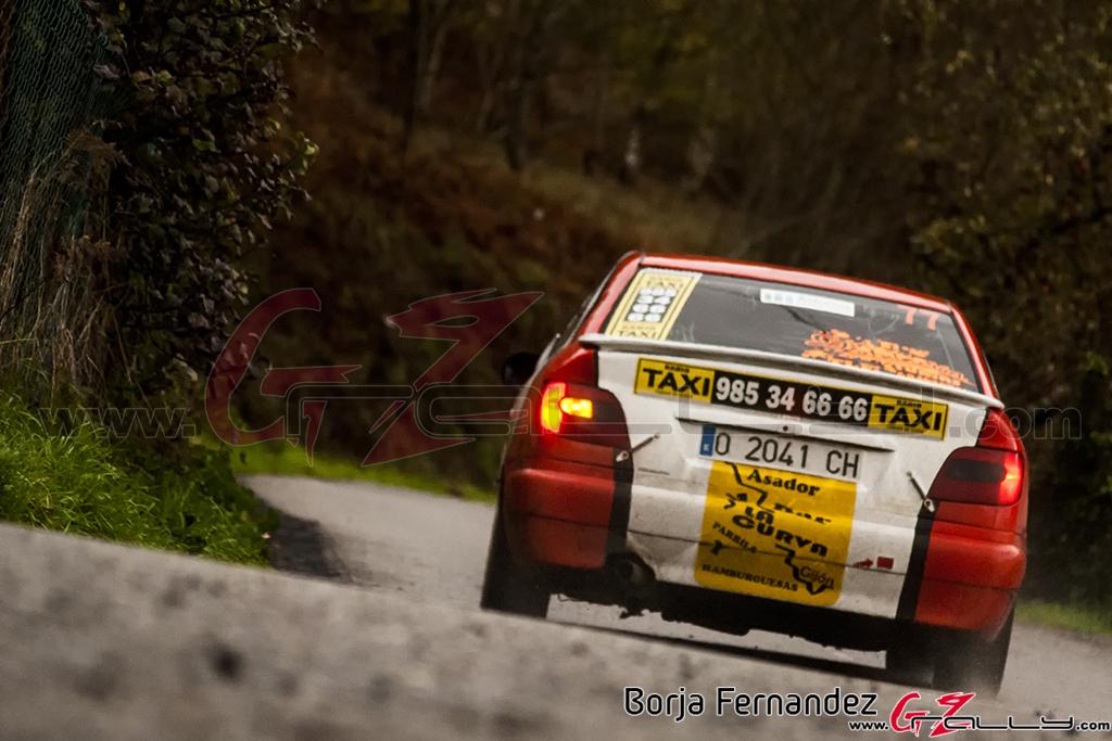 Rally_CangasDeNarcea_Fernandez_17_0021