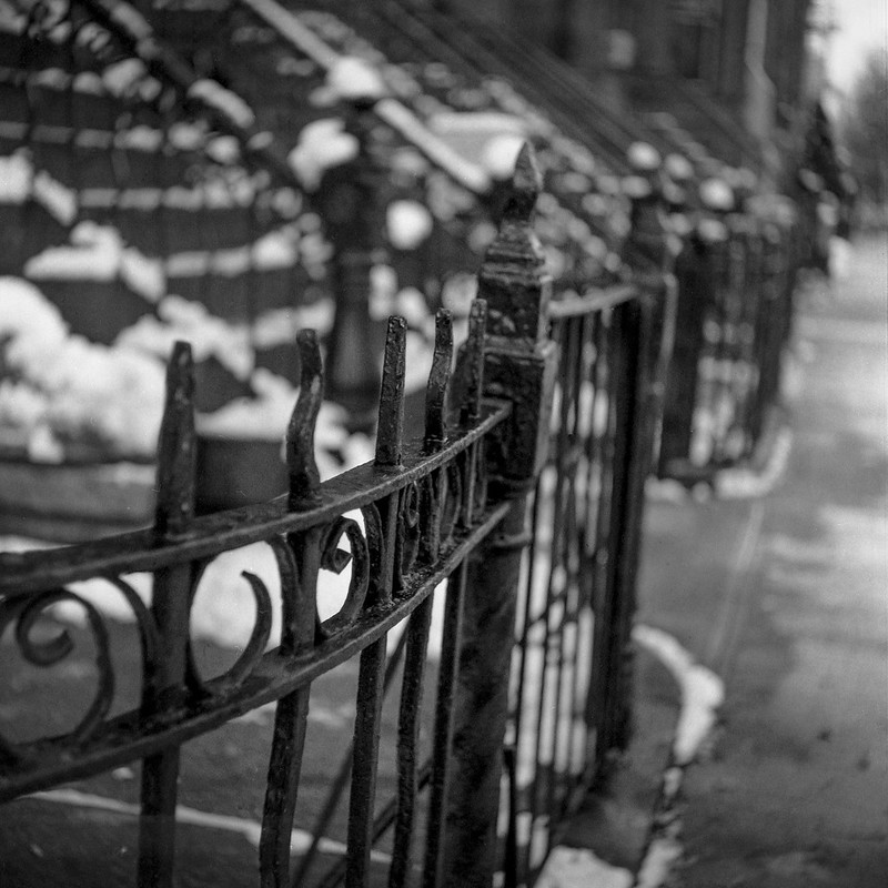 cast iron railings, front stoops, snow, steps, rowhouses, Jefferson Avenue, Bedford Stuyvesant, Brooklyn, New York, Ricoh Dia M, Arista.Edu 200, Moersch Eco Film Developer, early December 2017