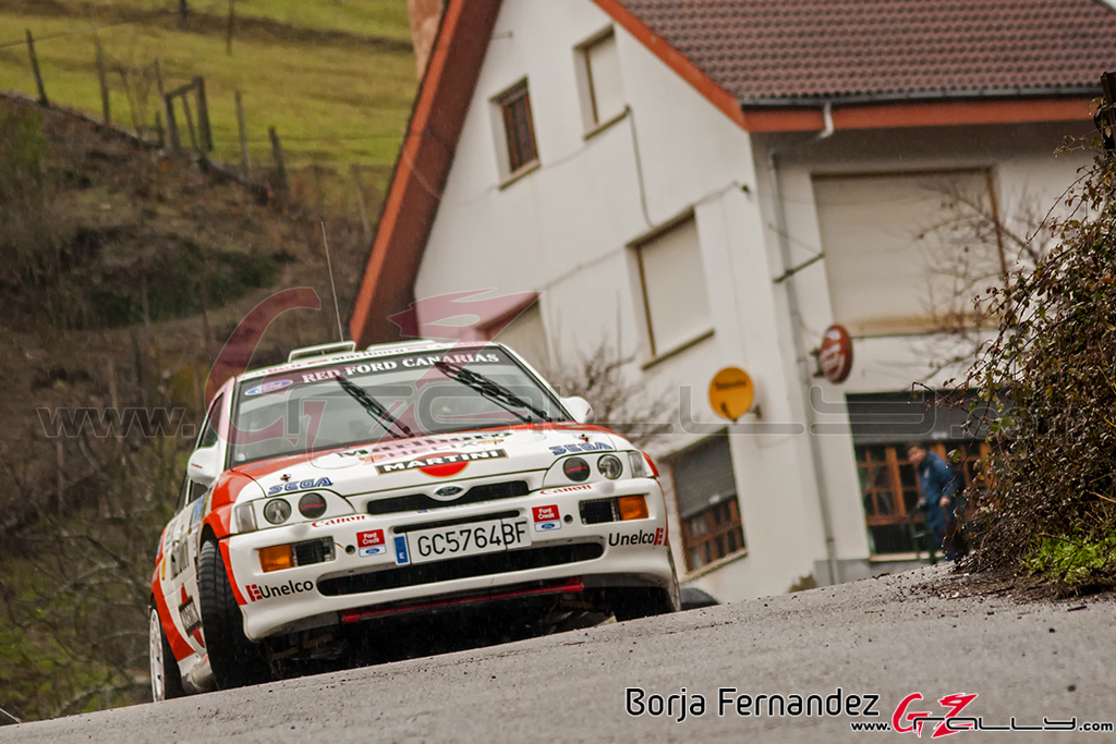 Rally_CangasDeNarcea_Fernandez_17_0011