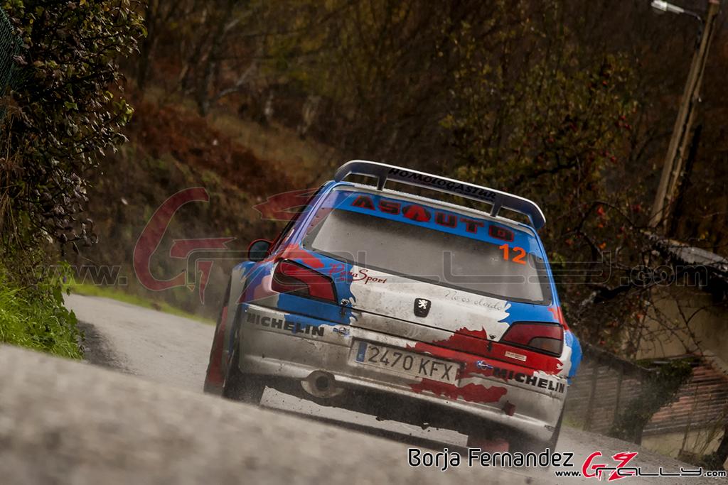 Rally_CangasDeNarcea_Fernandez_17_0014
