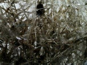 Muestra N° 60 : Cuarzo con inclusión ( posible Millerita)