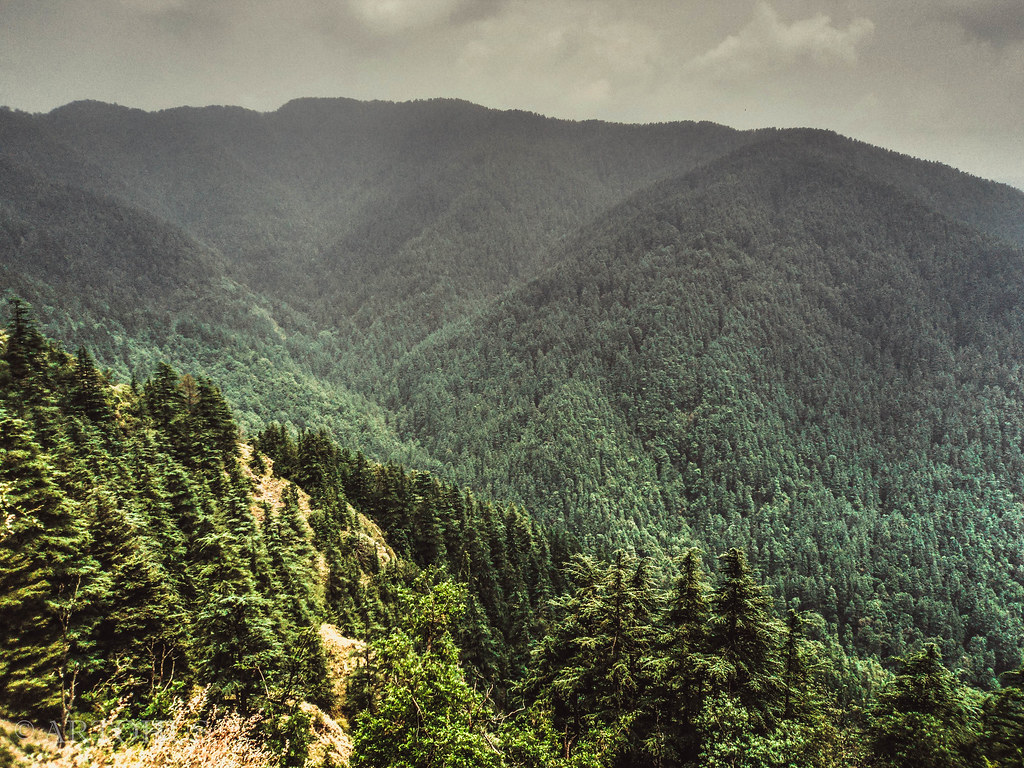 Anaimalai hills with elevation of 2695 m in kerala is highest peak of this range. A View Of Mountain Forests And Valley En Route Shimla Hi Flickr