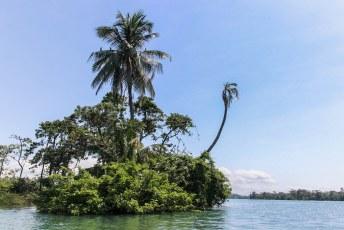 en langs la isla de los pajaros