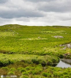 Ireland - 1009