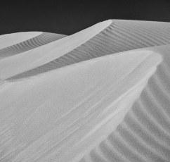 El Pinacate Dunes