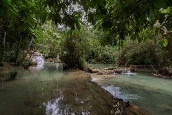 vlakbij de Kwang Si waterval