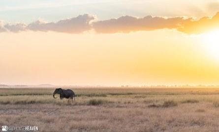 Kenya - 0188-HDR