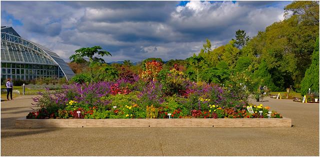 Kyoto Botanic Gardens, Kyoto, Japan.09
