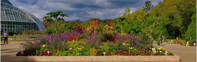 Kyoto Botanic Gardens, Kyoto, Japan