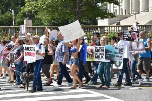 PETA march - Washington DC
