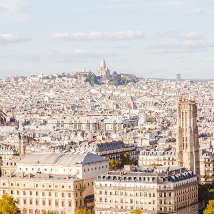Paris & sacre coeur in the distance