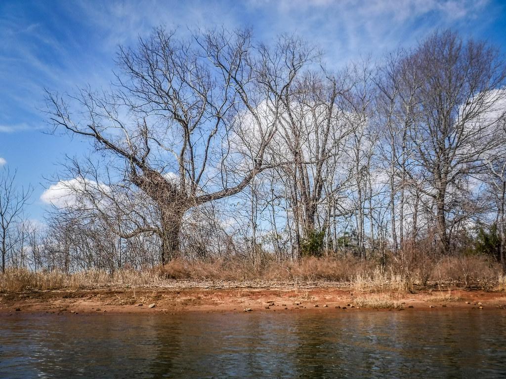Clark Hill Reservoir-98
