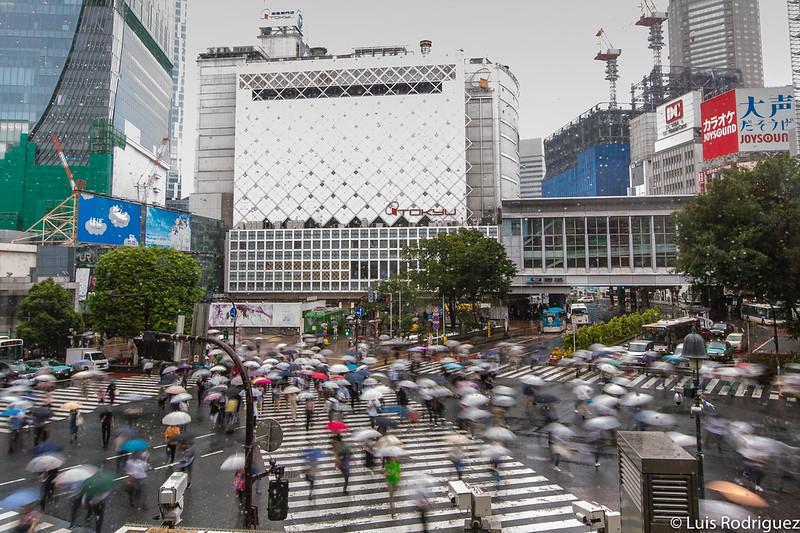 Cruce de Shibuya visto desde el Starbucks