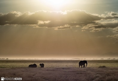 Kenya - 0063-HDR
