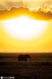 Kenya - 0183