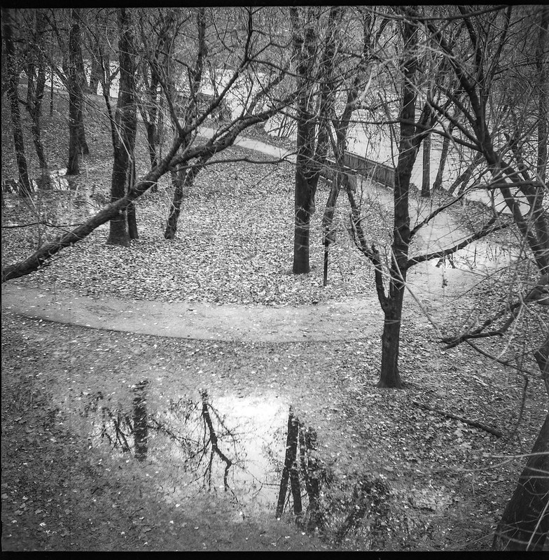 looking down, urban park II, light rain, pathway, puddle, reflections, French Broad River Park, Asheville, NC, Ricohflex Dia M, Arista.Edu 200, Ilford Ilfosol 3 developer, 11.15.18