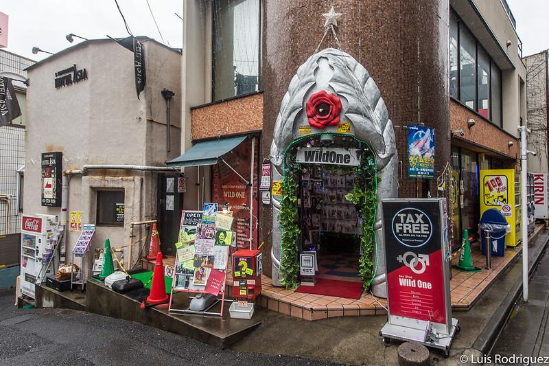 Sex shop en la colina de los love hotels de Shibuya