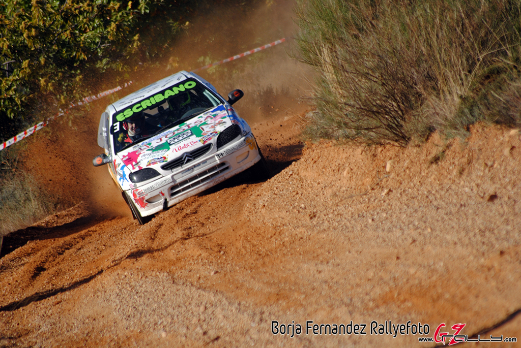 vi_rallysprint_de_tierra_de_sariegos_-_borja_fernandez_12_20161101_1501168304