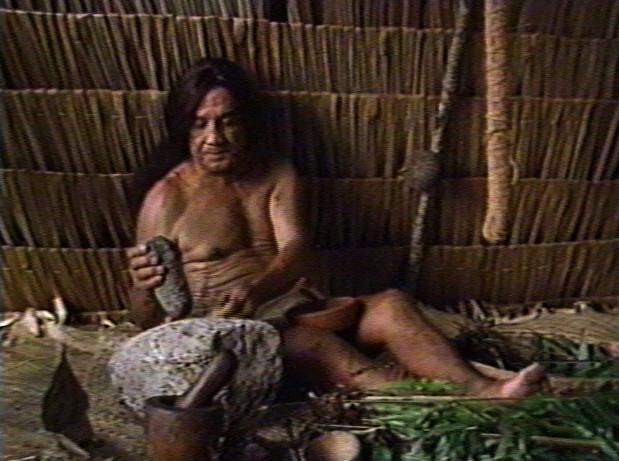 Suruhåno, Medicine Man or Herbalist