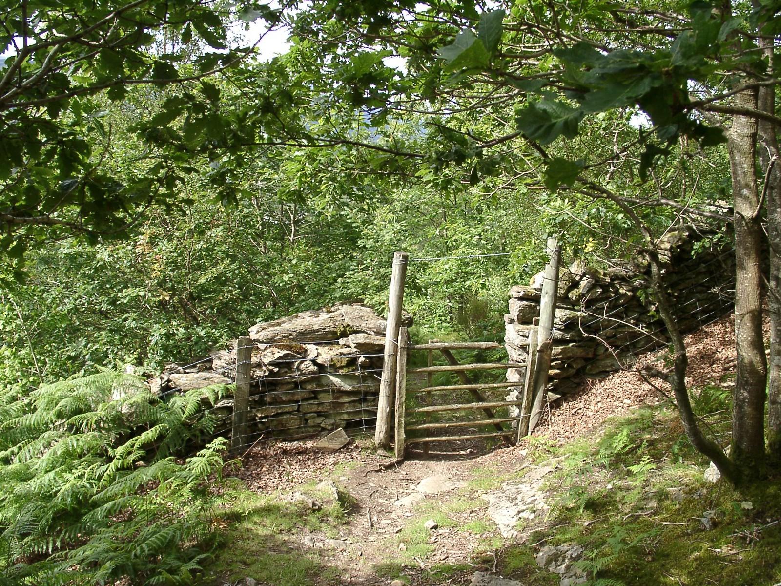 New Precipice Walk (July 2002)