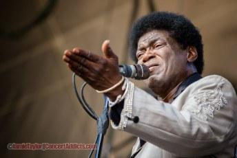 Charles Bradley @ Pemberton Music Festival - July 17th 2015