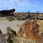 05 Viajefilos en Australia, Fraser Island 017