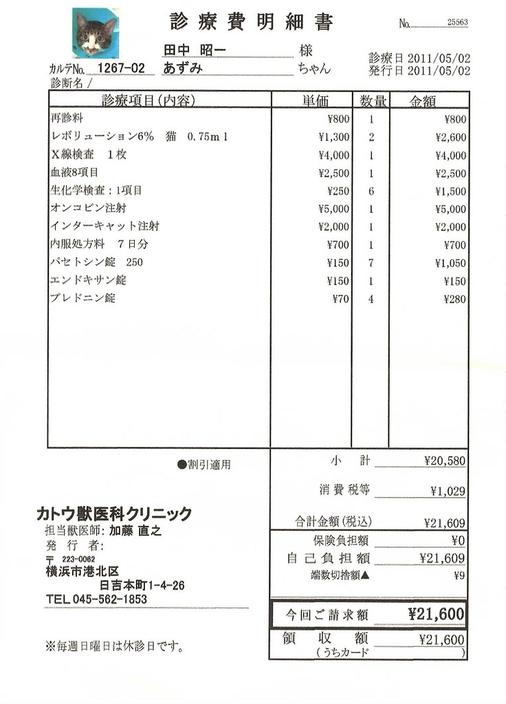 診療費明細書 | あずみ 2011年5月2日 | sh1tanaka | Flickr