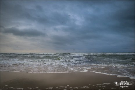 The North Sea (Texel)