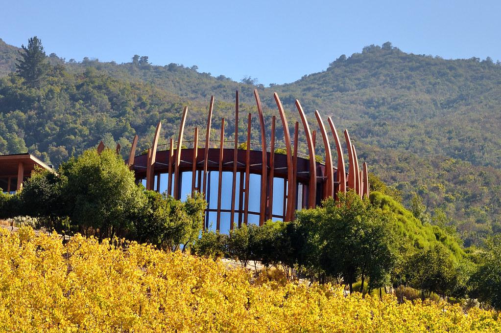 Wine Day Colchagua Premuim- Casa Lapostolle