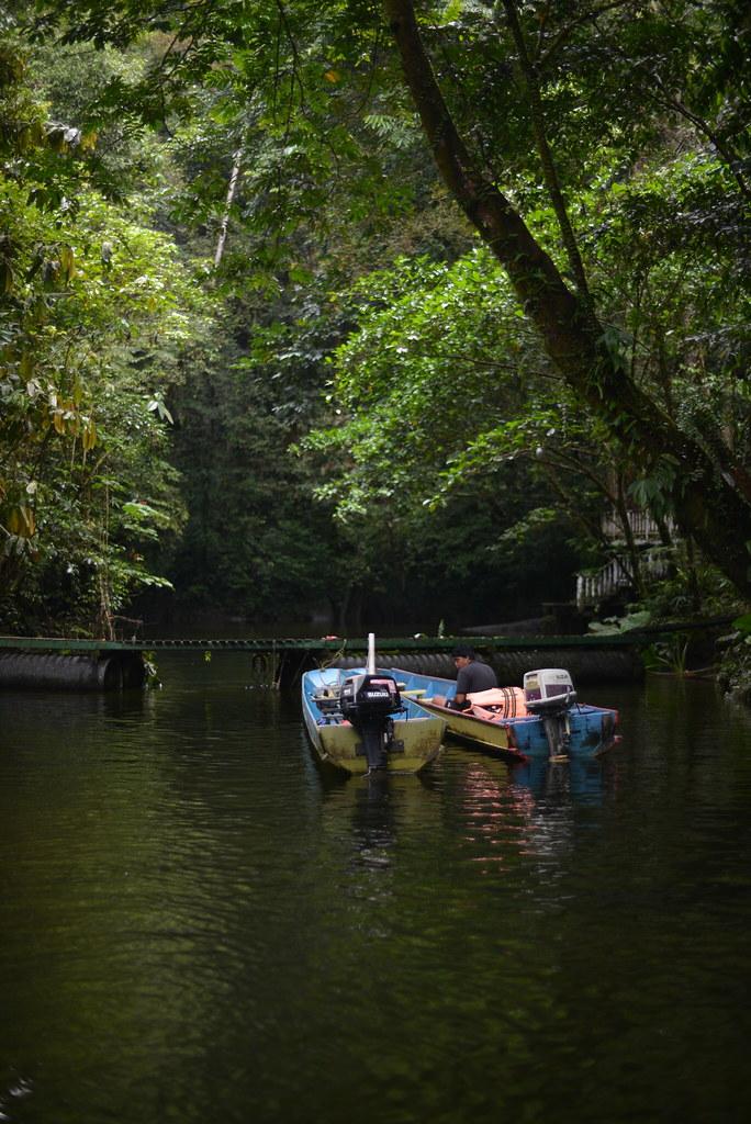 [馬來西亞] 砂勞越姆魯國家公園-清水洞 Clear Water Cave   Flickr