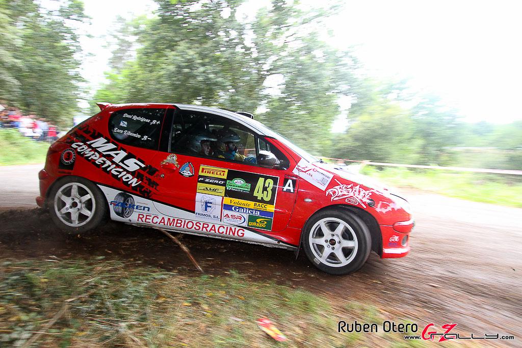 rally_sur_do_condado_2012_-_ruben_otero_254_20150304_2094252307