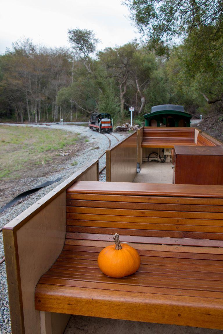 10.23. Swanton Pacific Railroad (Pumpkins)