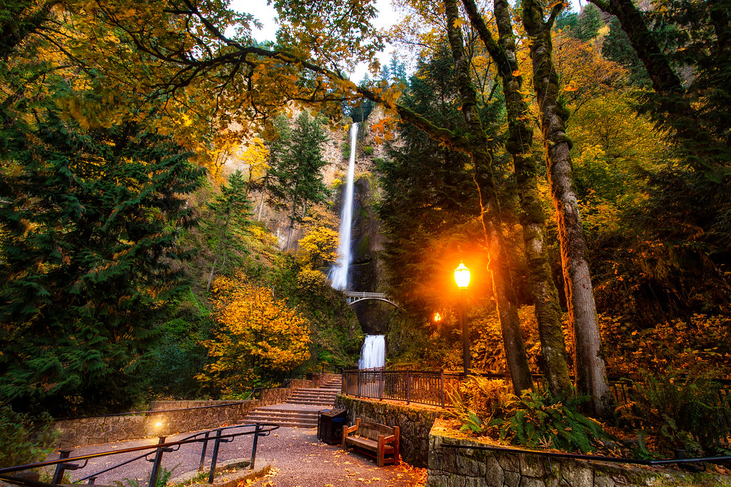 Multonomah Falls Wallpaper Fall Colors At Multnomah Falls By Michael Matti The