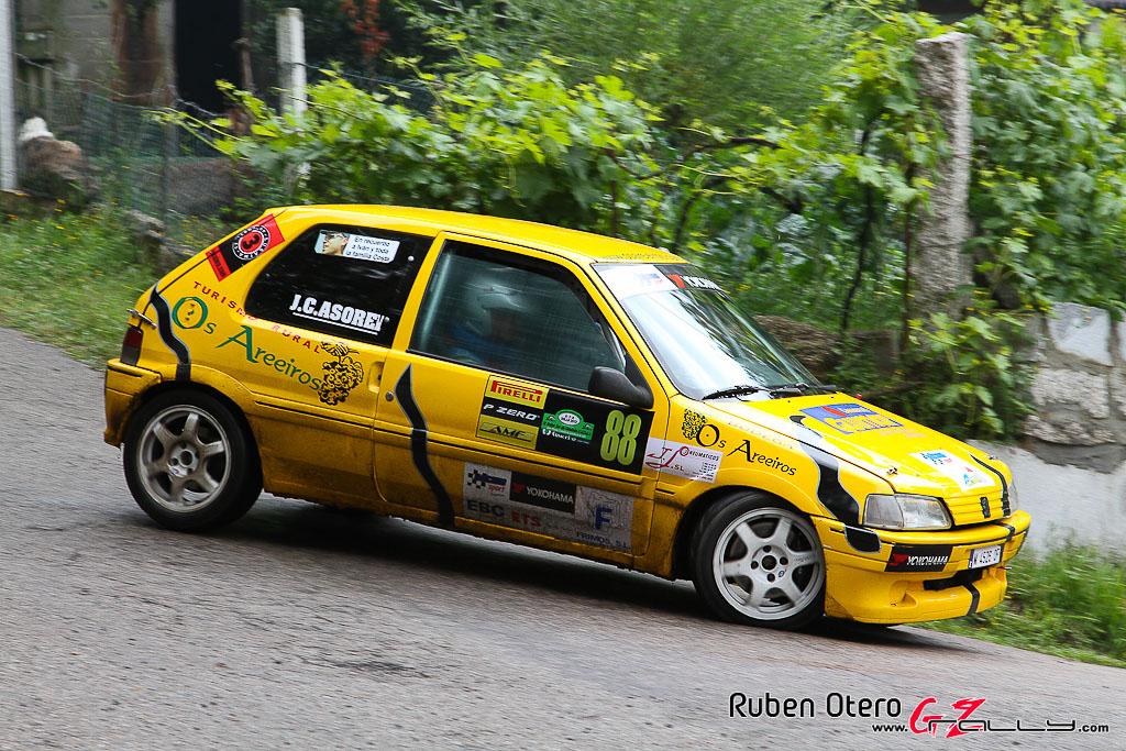 rally_sur_do_condado_2012_-_ruben_otero_111_20150304_1245375847