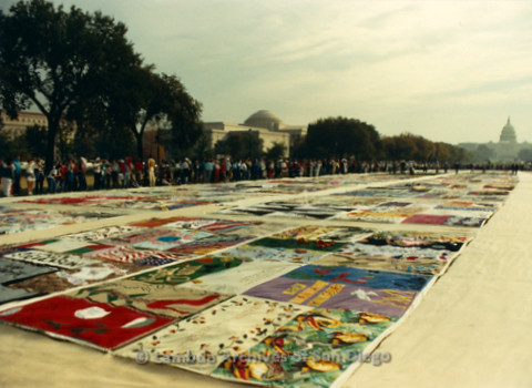 P019.301m.r.t AIDS Memorial Quilt 1987: Large crowd of people observing the AIDS Memorial Quilt, Capitol Building (background)