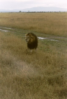 Kenia2002-09-16