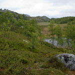 9 viajefilos en Noruega, Hardangervidda 02
