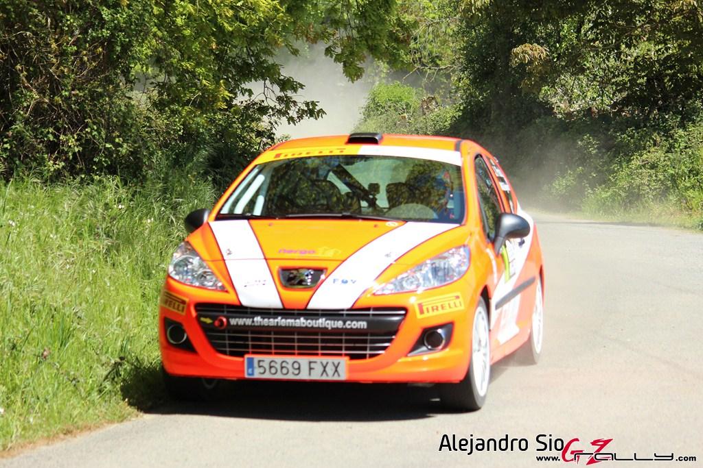 vi_rally_comarca_da_ulloa_10_20150307_1836519137